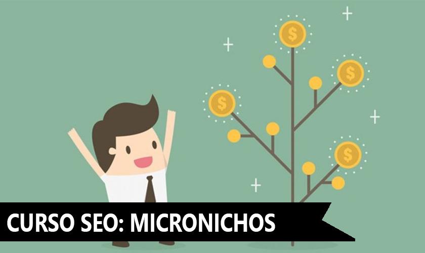 curso SEO - Microonichos Virgenes